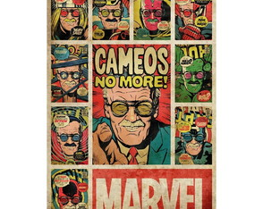 Placa Quadro Decorativo Marvel - Stan Lee Memory - Grande
