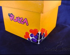 pucca-in-box