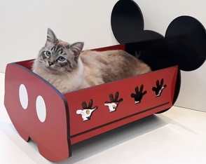 EXCLUSIVO Berço do Mickey para cães e gatos