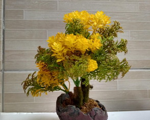 Bonsai Arvore Amarelo Mescla artificial.