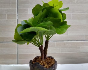 Bonsai Arvore Folha da Fortuna artificial.