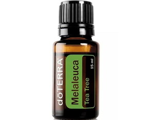 Melaleuca Tea Tree - Melaleuca alternifolia 15 ml- doTERRA