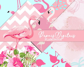 Kit Scrapbook: Papéis Flamingo