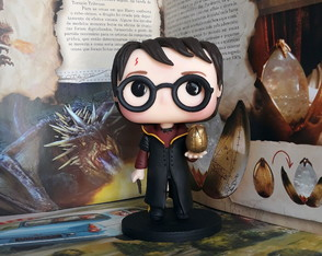 Harry Potter Funko Biscuit
