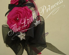 0011-tiara-the-little-princess
