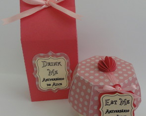 Kit Eat-me/ Drink-me Alice Rosa - Scrap