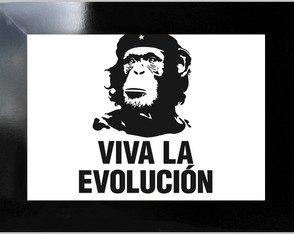 **QUADRO DECORATIVO - VIVA LA EVOLUTION