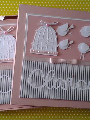 livro diário bebê menina caixa personalizado passarinhos