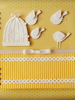 caderno bebê menino menina decorado passarinhos scrap