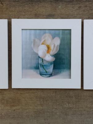 Trio de Quadros Vintage Flores com Vidro Tam 23 x 23 cm cada