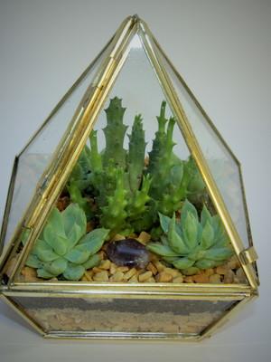 Terrário aberto pequeno pirâmide (P4)