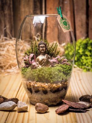 Terrário Fechado Buda (P1)