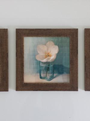 Trio de Quadros Vintage Flores com moldura e vidro
