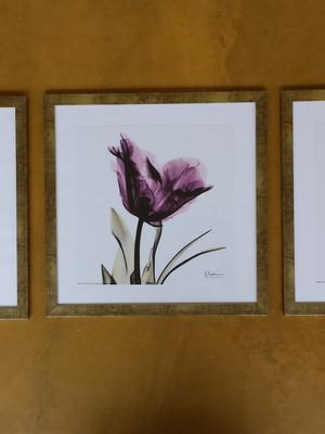 Kit 3 Quadros Flores com moldura e Vidro Tam.: 43 x 43 cm