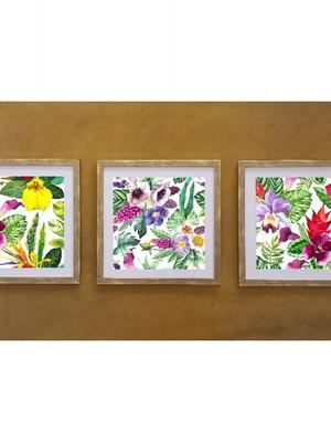 3 Quadros Flores com moldura e vidro tamanho 43 x 43 cm cada