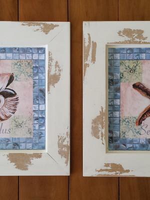 Dupla de Quadros de Conchas Decorativos Vintage 30 x 30 cm