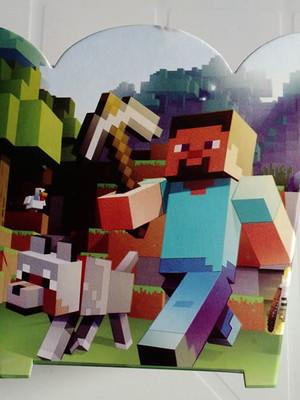 Cachepot Minecraft (01 un)