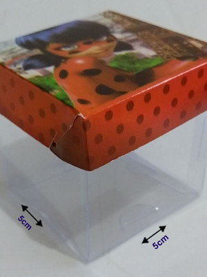 Caixinha Acetato Ladybug (10 un)