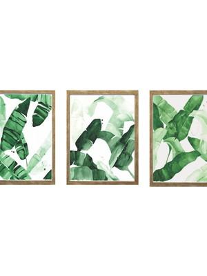 Trio de Quadros de Folhagens com Vidro Tam: 24 x 33 cm cada