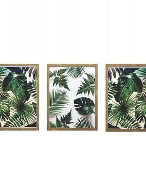 Trio de Quadros de Folhagens com Vidro Tam: 24 x 32 cm cada