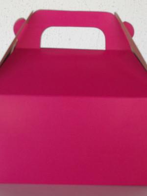 Caixa Box Pequena Lisa Pink (01 unid.)