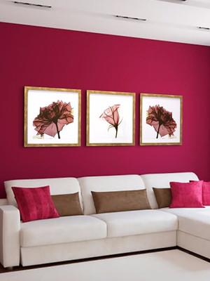 Trio de Quadros Flores com Vidro