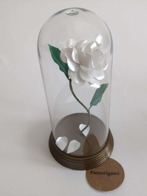Rosa Encantada M - Branca
