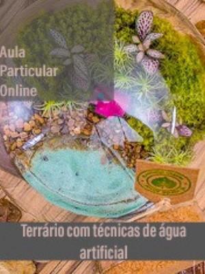 """Aula particular ONLINE de terrário - técnica da """"água"""""""