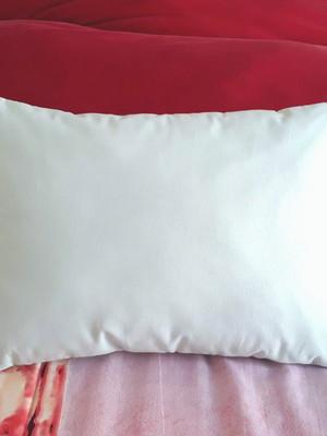 almofada tipo travesseirinho 25x35cm *