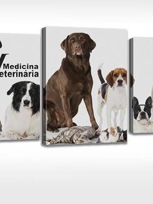 Quadro Personalizado Tela Clínica Veterinaria Vet Cachorrinh