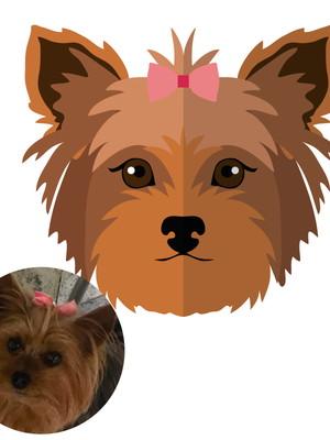Caricatura Digital Pets