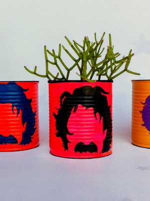 Belchior | lata para plantas
