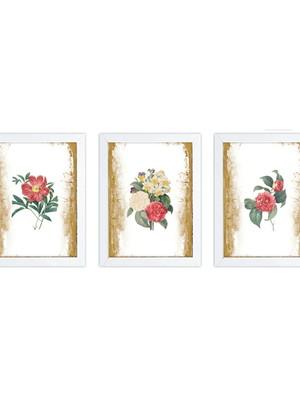 Trio de Quadros Linha Primavera Vintage, com moldura e vidro