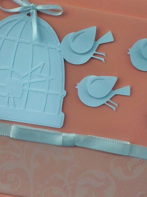 caderno personalizado bebê menina passarinhos scrap