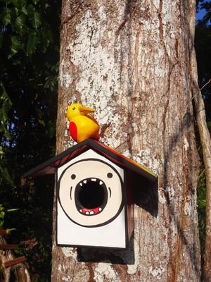 Casa de Pássaros - Finn - Peça Única