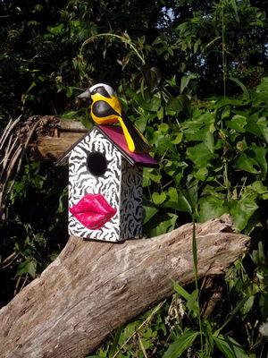 Casa de Pássaros - Zebra