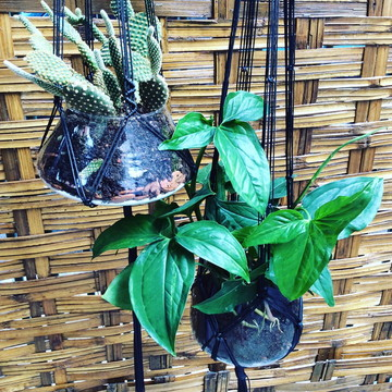 Suporte com vaso para plantas