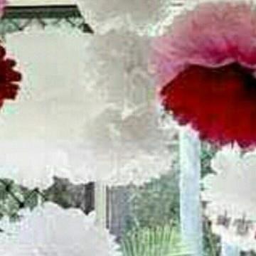Balão Pompom Decorativo Em Papel Seda 30