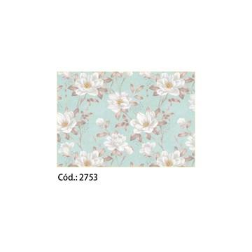 Papel Cartão 250g c/20FLS 65x47 #2753
