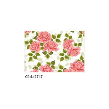 Papel Cartão 250g c/20FLS 65x47 #2747