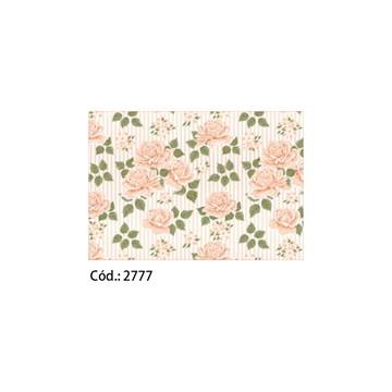 Papel Cartão 250g c/20FLS 65x47 #2777