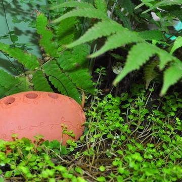 Vaso para terra em cerâmica