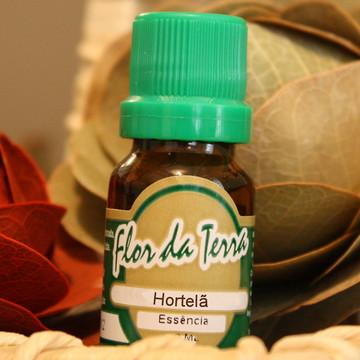 Essência aroma Hortelã