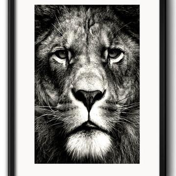 Quadro Leão Preto Branco com Paspatur