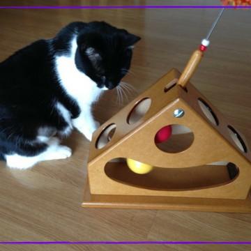 Brinquedo Para Gato - pendulo