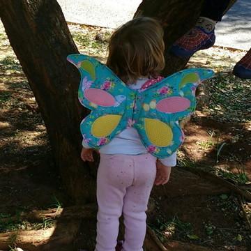 Asa de borboleta