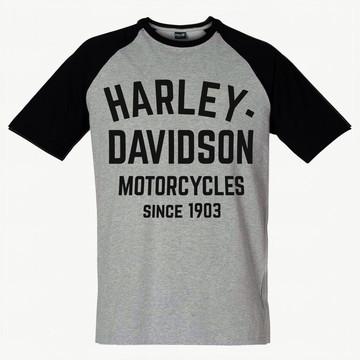 Camiseta Raglan SWAG Davidson Blusa Moto
