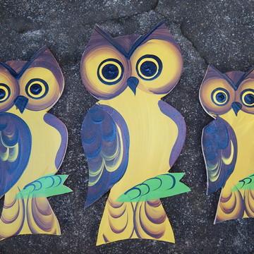 Decoração Coruja Trio parede