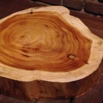 Bolacha de madeira sem casca