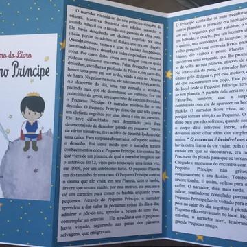 Resumo do livro : o pequeno príncipe